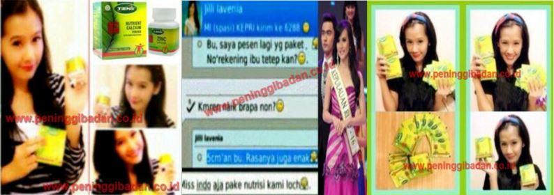 Artis-Ardina-Rasti-Artis-Jilli-Lavenia-Miss-Indonesia-NHCP-Zinc