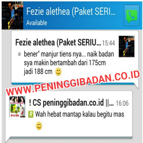 pelangsing badan herbal slim